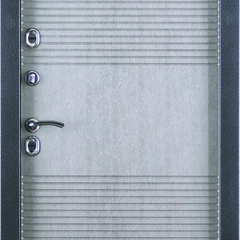 Металлическая дверь СТРАЖ Termostandart уличная
